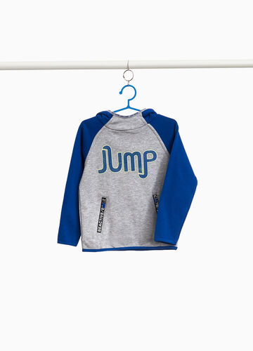 Two-tone sweatshirt with lettering print