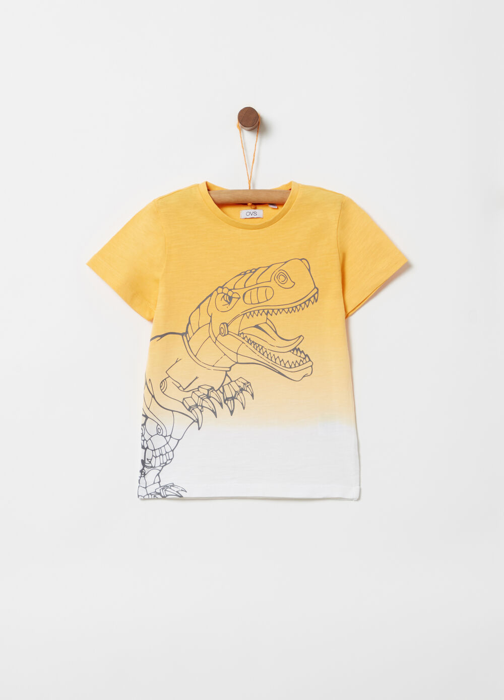 Organic cotton T-shirt with dinosaur